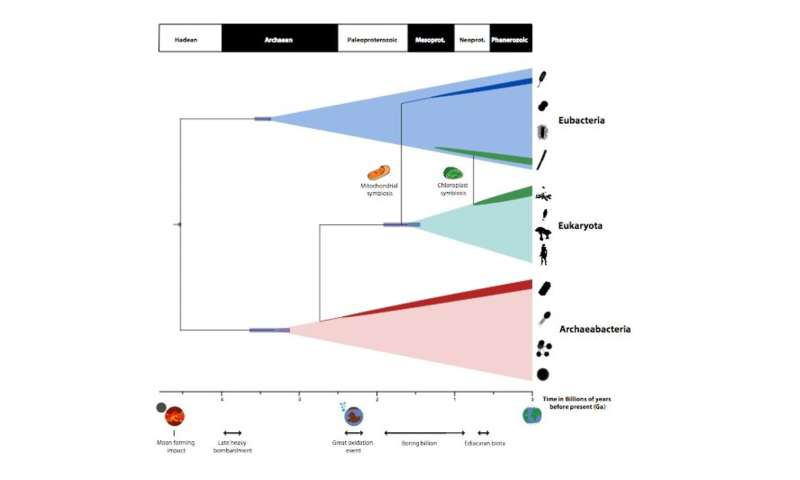 Ancestor of all life on Earth evolved earlier than we thought, according to our new timescale