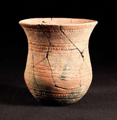 Ancient DNA tells tales of humans' migrant history