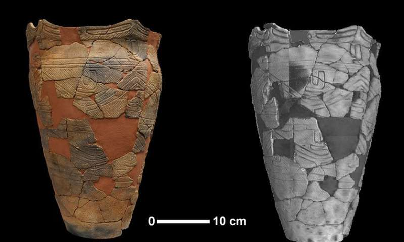 Ancient Japanese pottery includes an estimated 500 maize weevils
