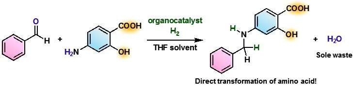Approaching an ideal amino acid synthesis using hydrogen