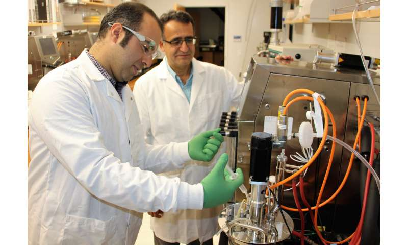 Biofilm reactor promises to cut production costs on vitamin K