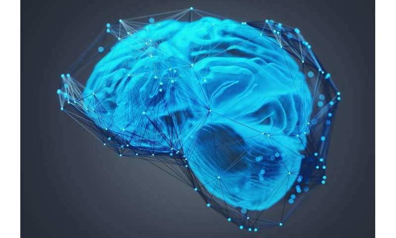 Brain-inspired methods to improve wireless communications