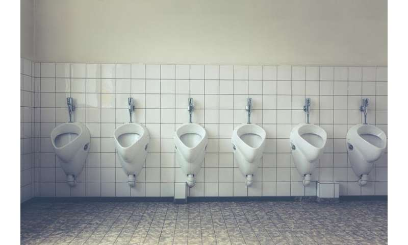 Can you catch germs from a public toilet seat?