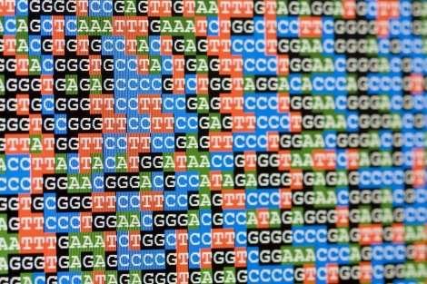 CRISPR-based tool maps gene function in human cells