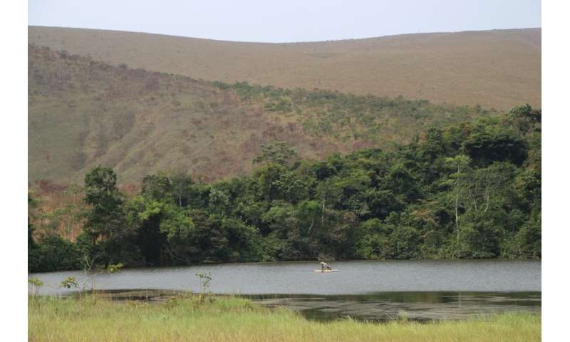 Deforestation in tropical Africa is not as bad as previously thought