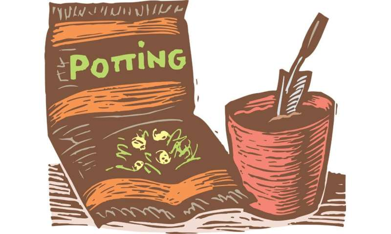 Don't worry, the chance of dying from potting mix is very slim