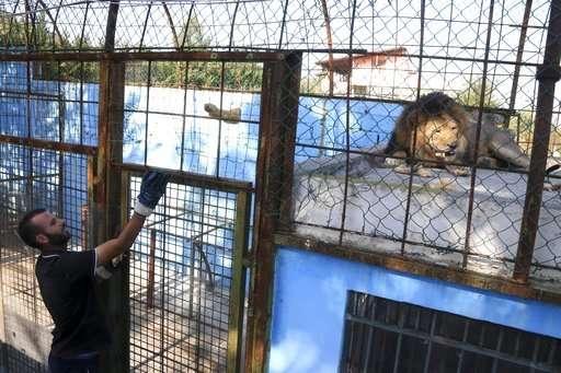 False 'malnourished' report prompts Albania zoo closure