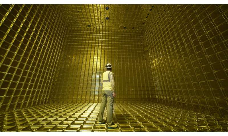 First particle tracks seen in prototype for international neutrino experiment