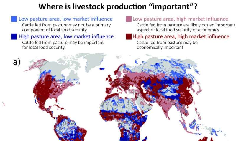 Global grazing lands increasingly vulnerable to a changing