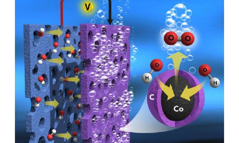 High-efficiency and low-cost catalyst for water electrolysis