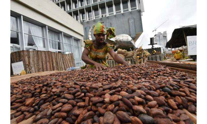 Ivory Coast supplies two million tonnes of cocoa to the world market annually