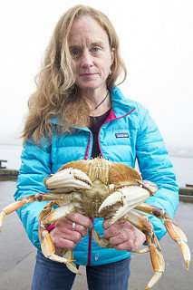 Little genetic difference among Dungeness crab from California to Washington