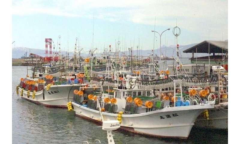 Mercury rising—are the fish we eat toxic?