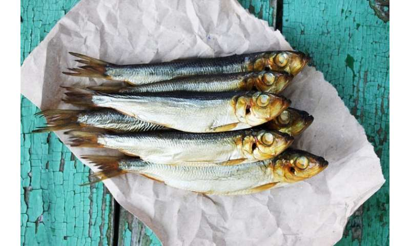 Mothers who eat oily fish could boost their child's gut health – but only if it's a boy