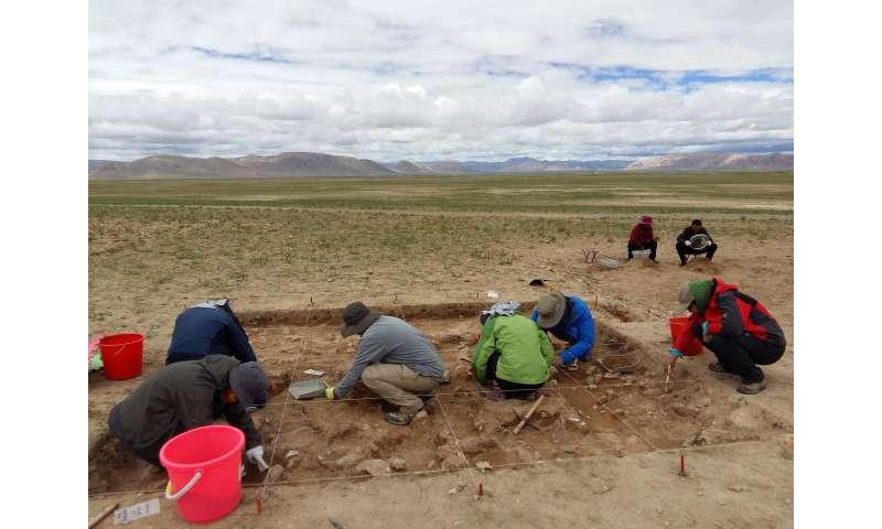 New archaeological site revises human habitation timeline on Tibetan plateau