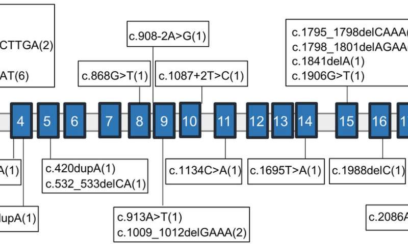 Newly identified gene mutation results in intellectual disability and developmental delay