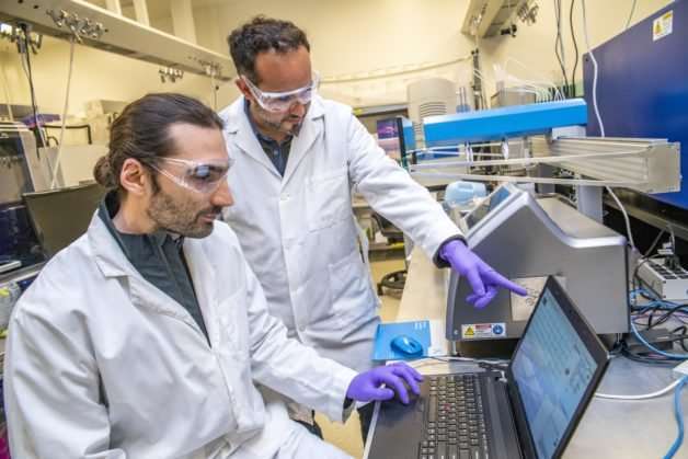 New machine learning approach could accelerate bioengineering