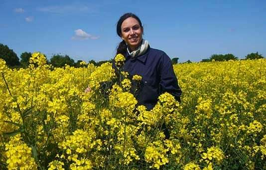 New research warns of a resistance gene at risk in oilseed rape