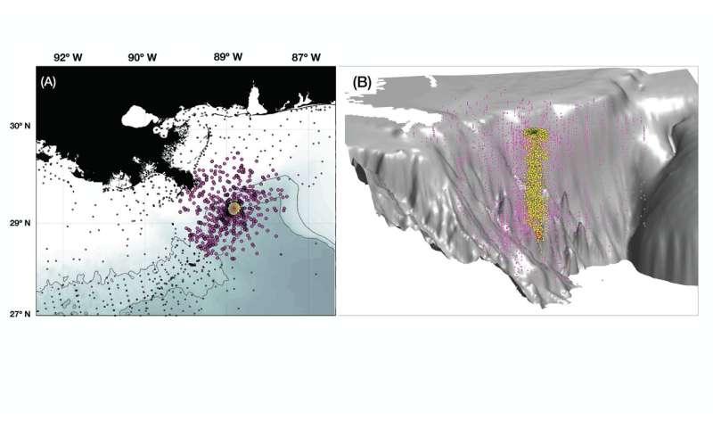 New study found deep sea chemical dispersants ineffective in Deepwater Horizon oil spill