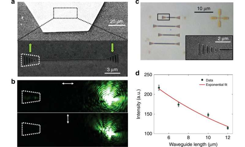 On-chip excitation of nanodiamonds embedded in plasmonic waveguides