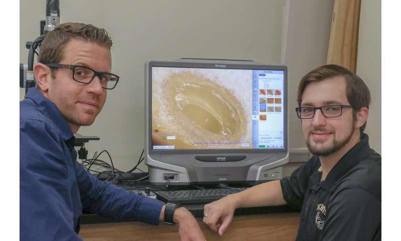 Orange peels may hold secret to airborne medicine, safer bridges