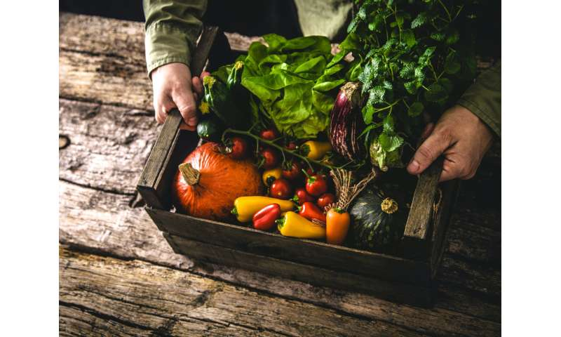 Organic farming with gene editing—an oxymoron or a tool for sustainable agriculture?