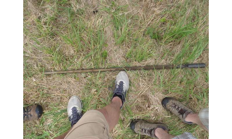 Penetrating the soil's surface with radar