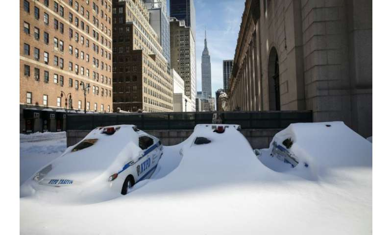 """Police cars covered in snow in the 2016 """"Snowzilla"""" storm, which dumped some 25 inches on New York"""