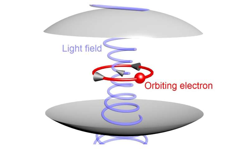 Quantum shift shows itself in coupled light and matter