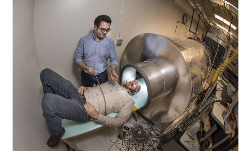 Researchers at Sandia work on new way to image brain