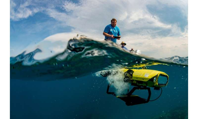 Robot makes world-first baby coral delivery to Great Barrier Reef