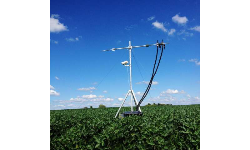 Scientists monitor crop photosynthesis, performance using invisible light