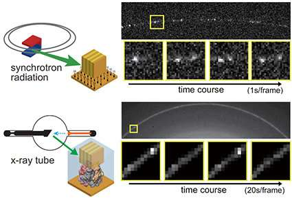 Successful observations of the dynamic of single molecules with amazing low X-ray doses (Graduate school of frontier sciences, t