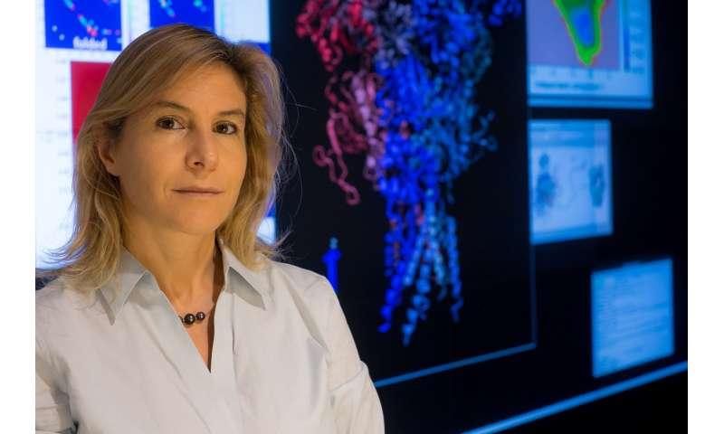 Team computes protein conformations for paths around autoimmunity