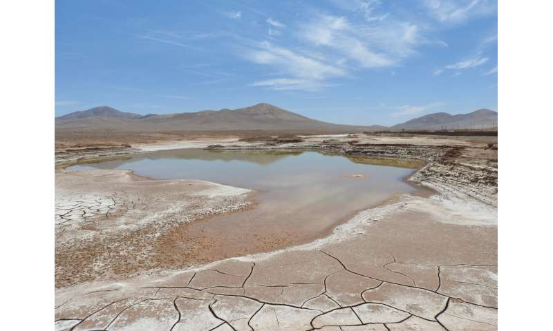 The first rains in centuries in the Atacama Desert devastate its microbial life