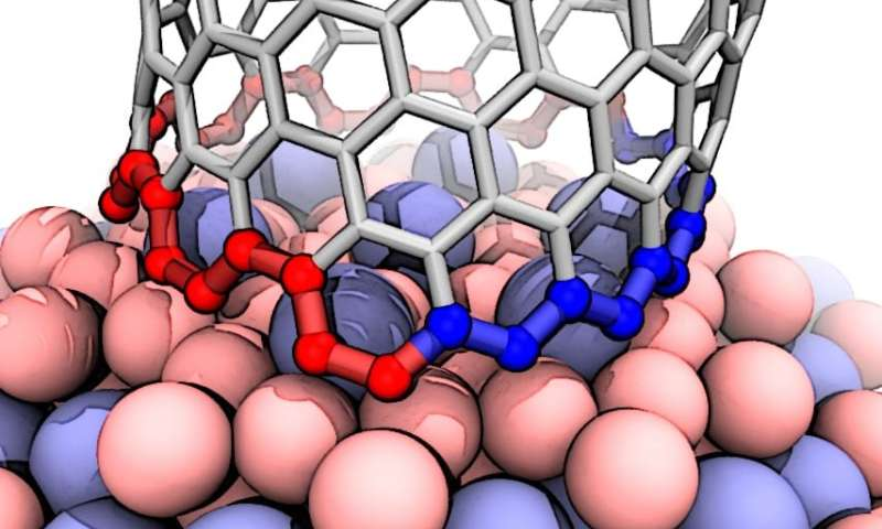 Theorists find mechanism behind nearly pure nanotubes from the unusual catalyst