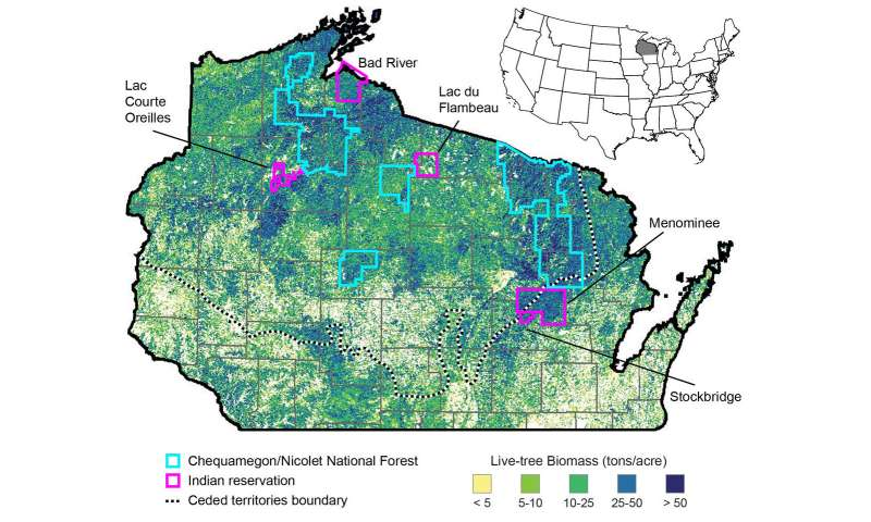 Tribal forests in Wisconsin are more diverse, sustainable