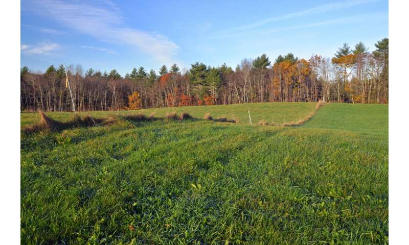 UNH researchers find landscape ridges may hold clues about ice age and climate change