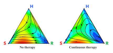 Using mathematical models to determine the best chemotherapy schedules