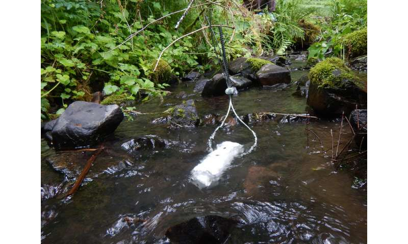 When it comes to keeping streams cool, buffer strips help but geology rules