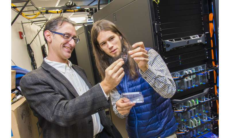 WPI and Stanford researchers develop sperm-sorting device that could improve IVF success