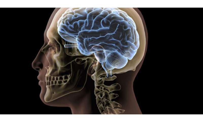 Army scientists discover mathematics of brain waves