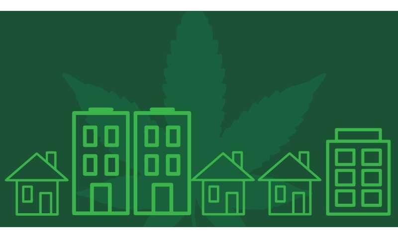 Medical marijuana stores: NIMBY
