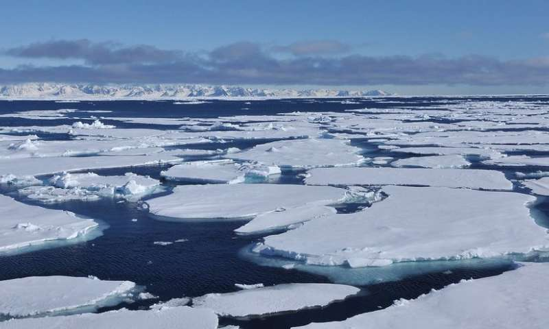 Scientists show polar 'polynya' supported marine life during last Ice Age