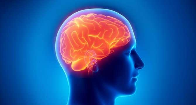 Scientists unravel brain networks of cardiac arrest survivors