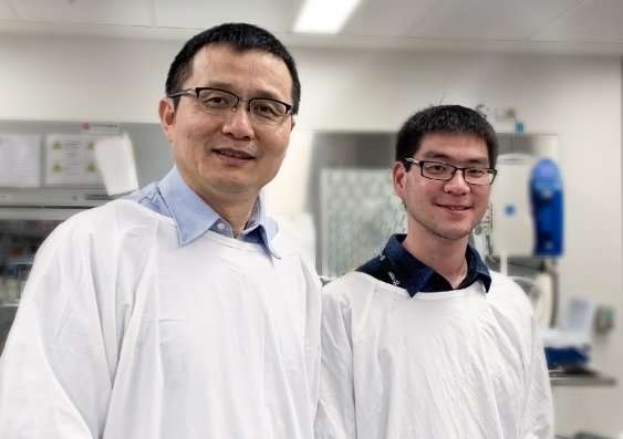 Scientists shine light on protein linked to fat storage
