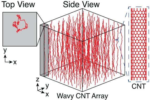Researchers create predictable patterns from unpredictable carbon nanotubes