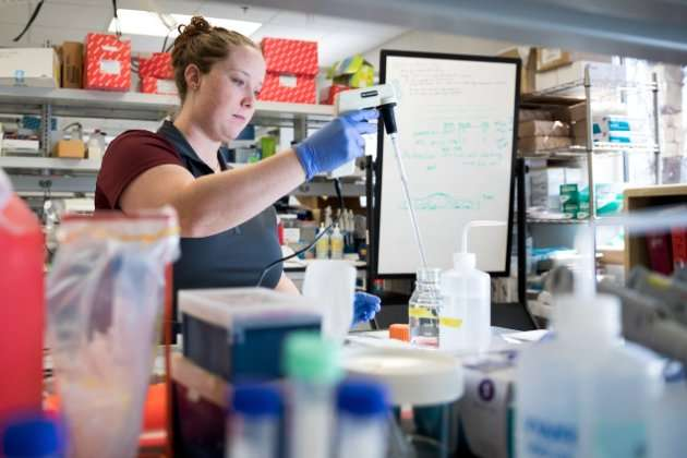 Researchers examine role of fluid flow in ovarian cancer progression