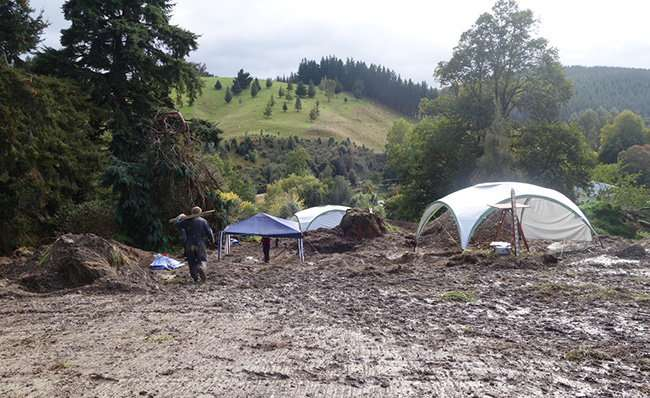 Researchers reveal history through exhumation of Otago graves