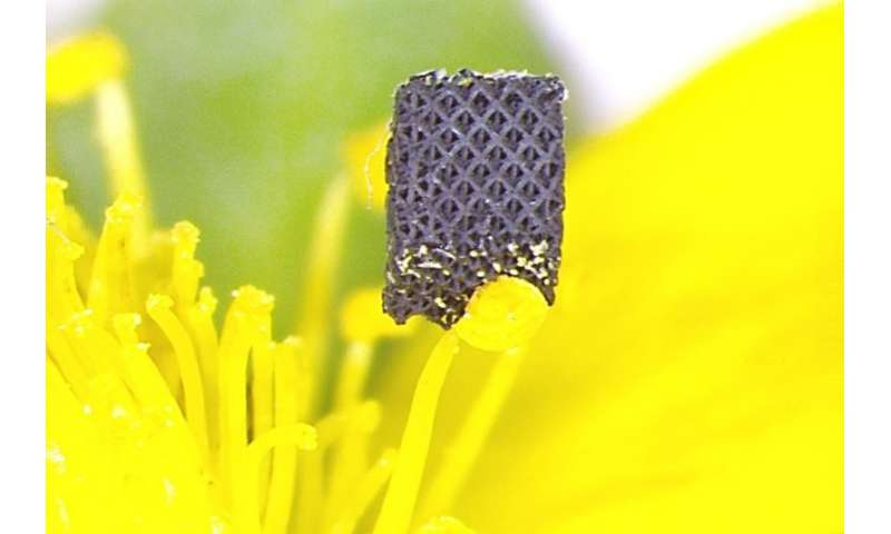 Researchers develop novel process to 3-D print one of the strongest materials on earth
